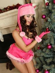 Taylor Vixen Christmas Tree With A Toy
