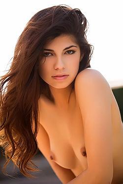Sexy Ava Taylor